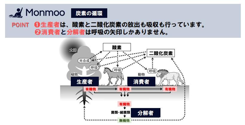 炭素の循環(中学理科)