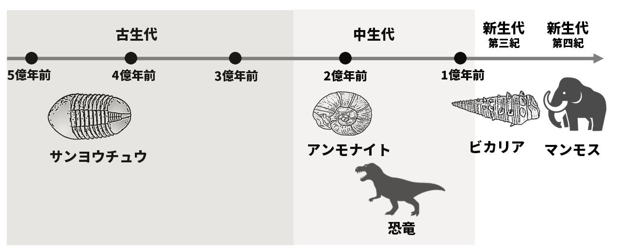 地質時代の区分