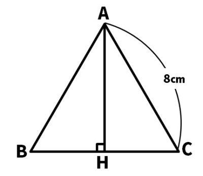 正三角形の高さと面積の問題